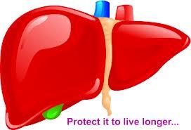 Obat Tradisional Penyakit Liver